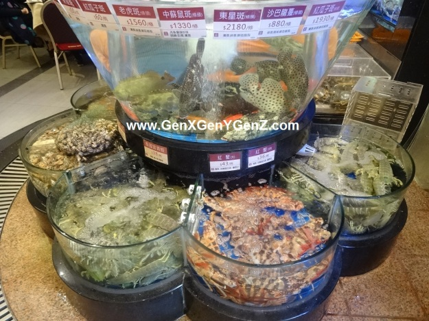 Tou Tou Koi Seafood Restaurant Michellin Star Macau