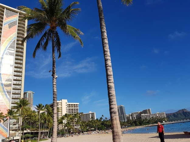 Hilton Hawaiian village beach 3