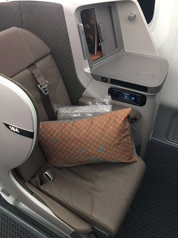 Singapore Airlines Business Class Boeing 787 Nagoya to Singapore Seat 7