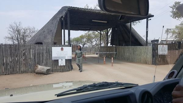 South Africa Safari 2