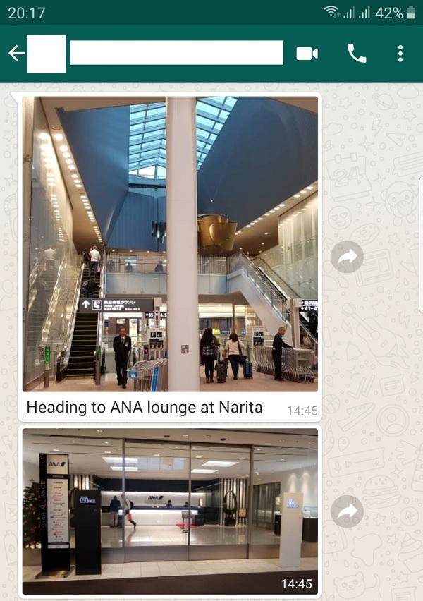 ANA Business Class 1.jpg